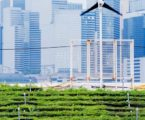 Big Data Suggests Big Potential for Urban Farming