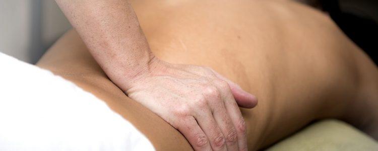 chiropractic care alamo