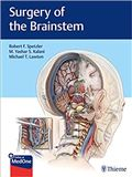 image of Surgery of the Brainstem