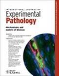 image of International Journal of Experimental Pathology