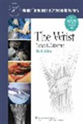 image of Master Techniques in Orthopaedic Surgery: The Wrist