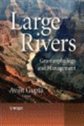 image of Large Rivers: Geomorphology and Management