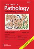 image of Journal of Pathology, The