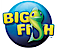 Big Fish Games Company Profile