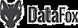 DataFox Intelligence, Inc. logo