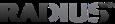 Radius Intelligence Company Profile