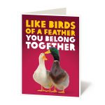 Engagement, Duck couple