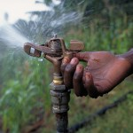Irrigate a farmer's land for four months
