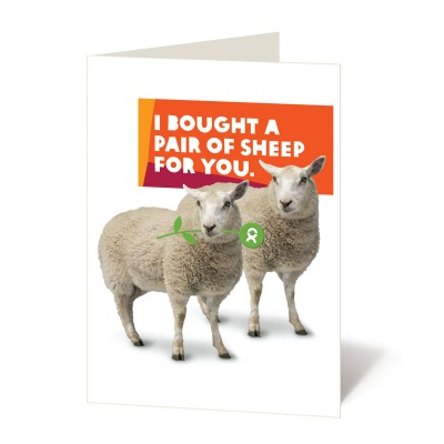 Pair of sheep