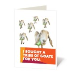 A tribe of goats