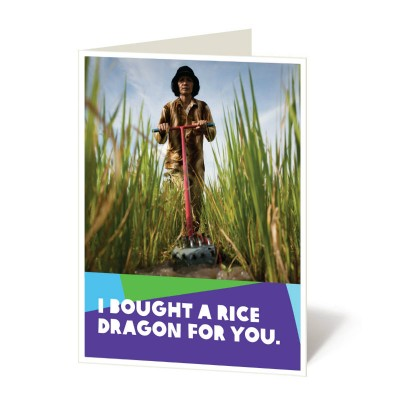 Rice dragon