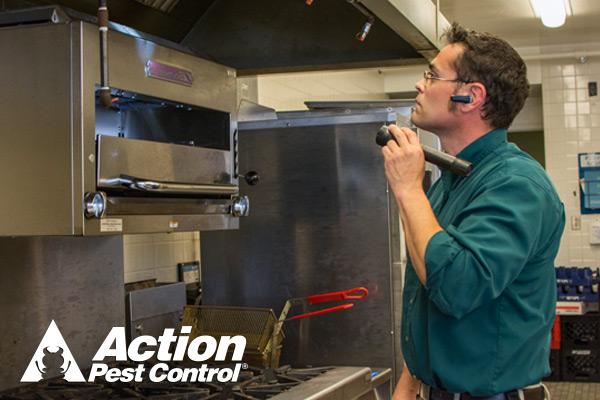 Action Pest Control - Jasper, IN