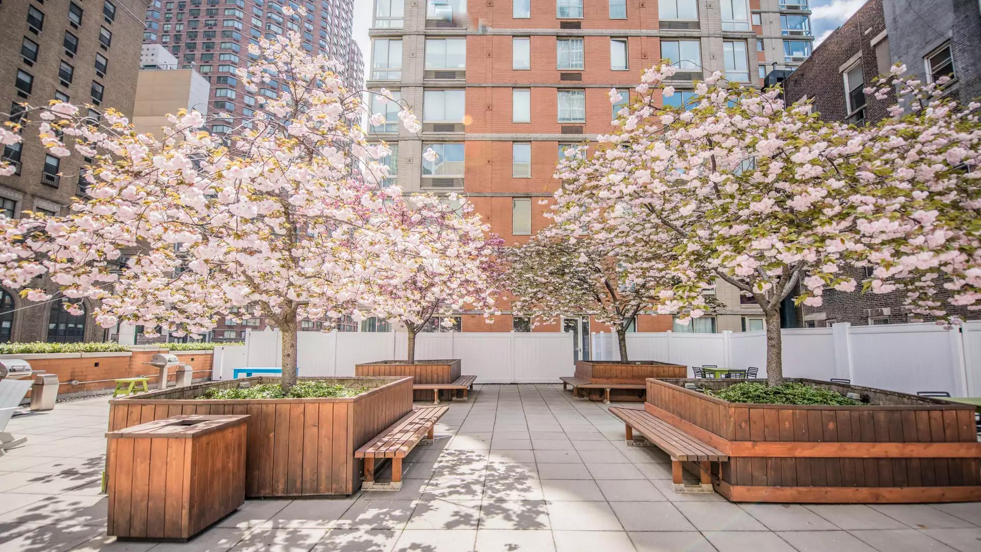 Longacre House Apartments - New York, NY