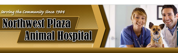 Northwest Plaza Animal Hospital - Grapevine, TX