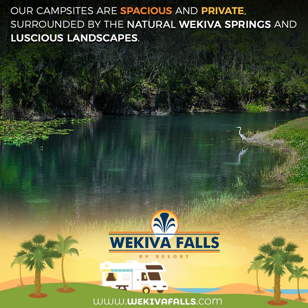 Wekiva Falls RV Resort - Sorrento, FL