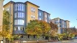 City Square Bellevue Apartments - Bellevue, WA