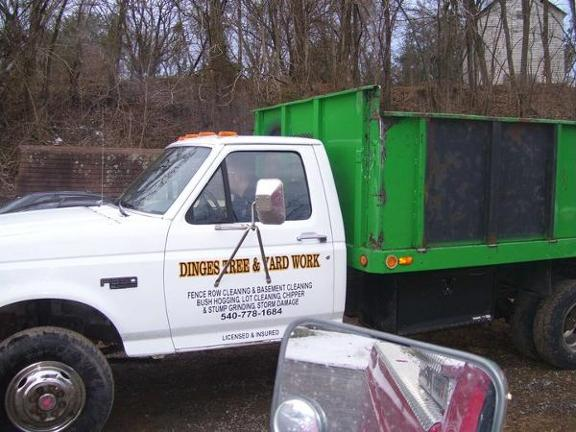 Dinges Tree Service - Stanley, VA