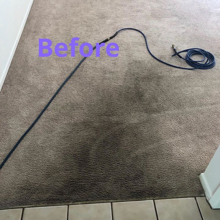 Image 1 | Gorilla Carpet Cleaning