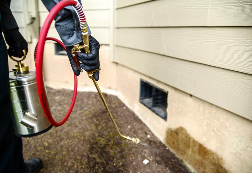 First Quality Pest Control - Northridge, CA 91325 - (818)886-2847 | ShowMeLocal.com