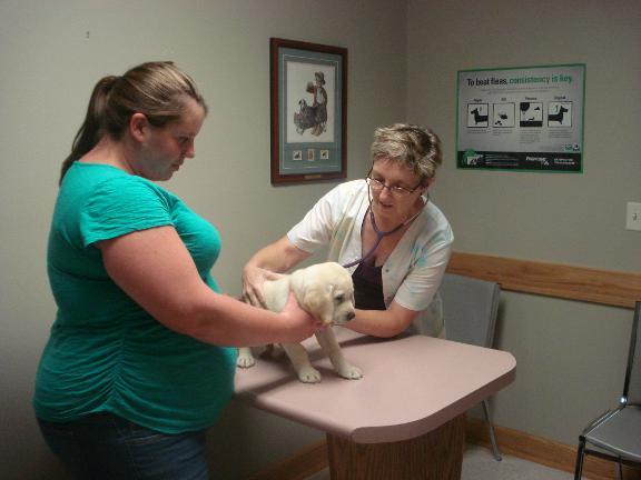Rush Animal Care Clinic PC - Johnston, IA