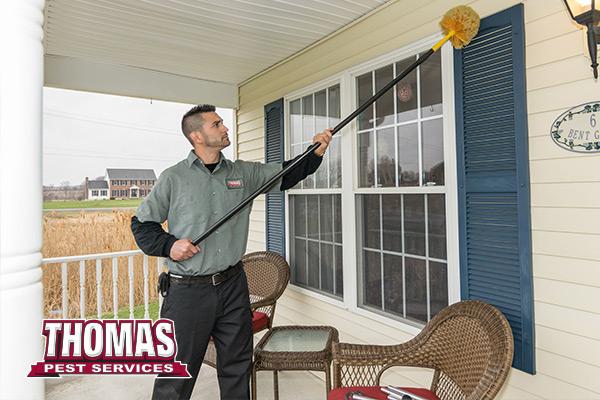 Thomas Pest Services - Albany, NY