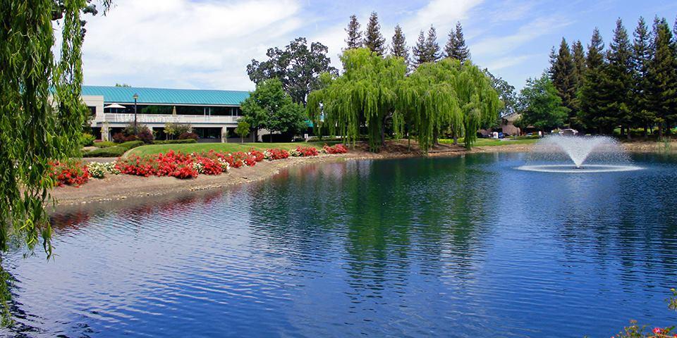 Friedemann Goldberg LLP - Santa Rosa, CA