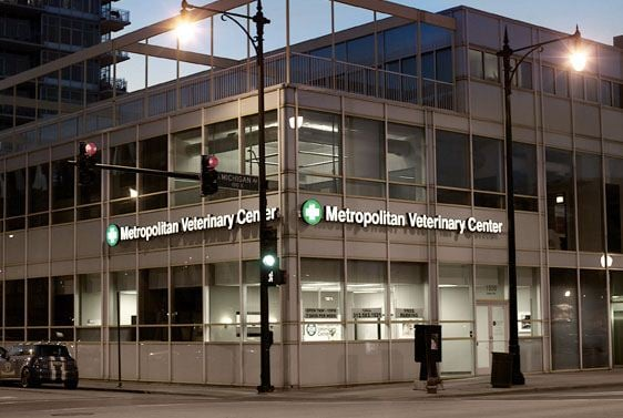 Metropolitan Veterinary Center - Chicago, IL