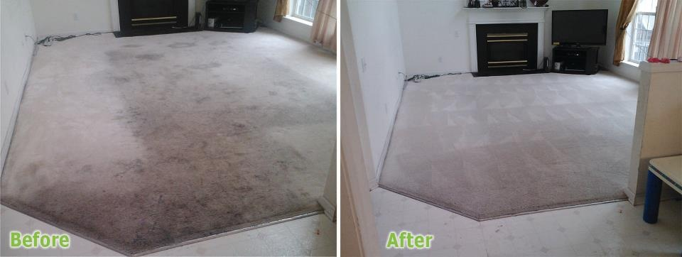 Cleaner Carpet Concepts - Charlotte NC Carpet Cleaning - Charlotte, NC
