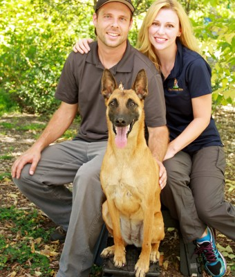 Dog Training Elite - Scottsdale, AZ