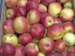 apples at a street sale