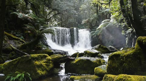 horseshoe falls in tasmania's mt field national park