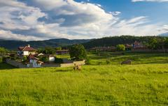 two horse feeds on the meadow in balkan mountain on rural houses background.