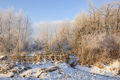 an english midwinter landscape with a fence and gateway to frost covered forest trees
