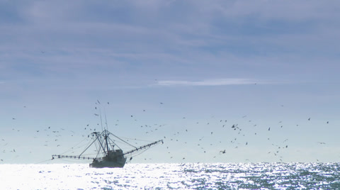 3832