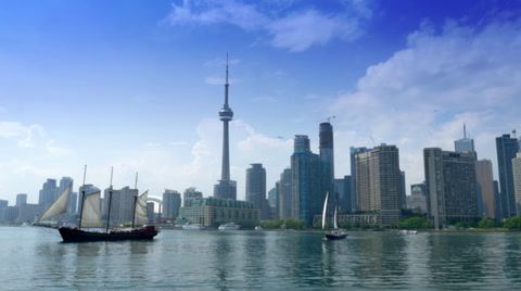 4619