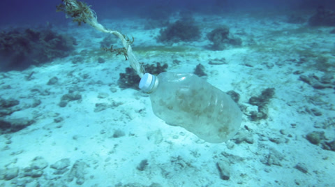 Plastic bottle floating along coral reef - underwater ocean trash, Philippines