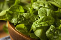 raw green organic baby spinach in a bowl