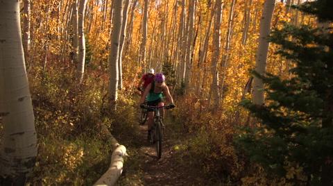 Couple mountain bikes through aspen trees in fall
