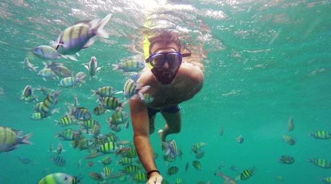 Man snorkeling among fish