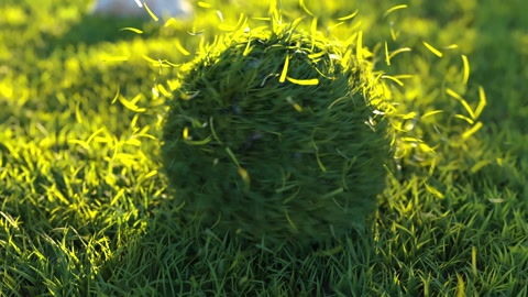 Grass Ball Logo is a fresh looking and organically animated After Effects template with a dynamically animated grassy ball that spins around to reveal your logo. This template contains 1 logo placeholder. A sunny introduction to your TV shows, commercials, presentations, slideshows, promotions and events videos. No plugins required. Music not included.