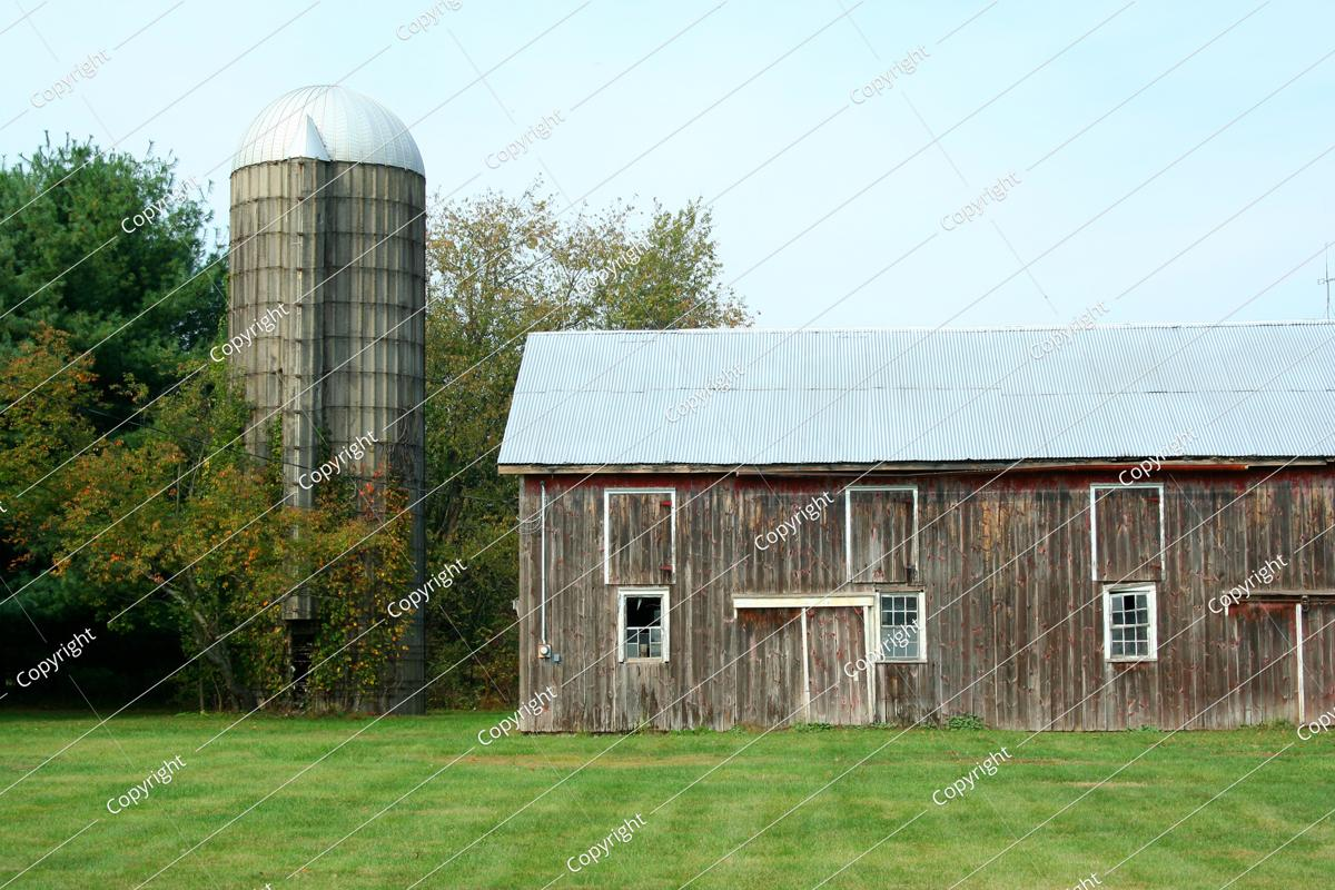 a barn and silo with trees and grass