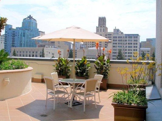 Rooftop_terrace.slide