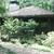 Wg-existingpavilion-summer.thumb