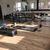 Gym_pic.thumb