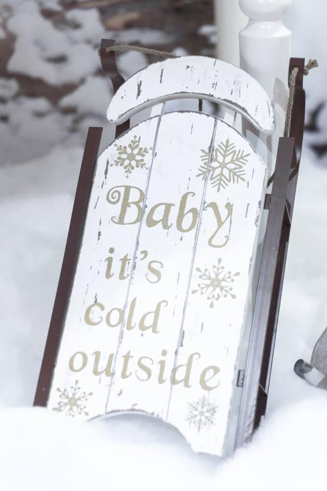 Winter Wonderland Inspired Baby Shower Paarteez Com