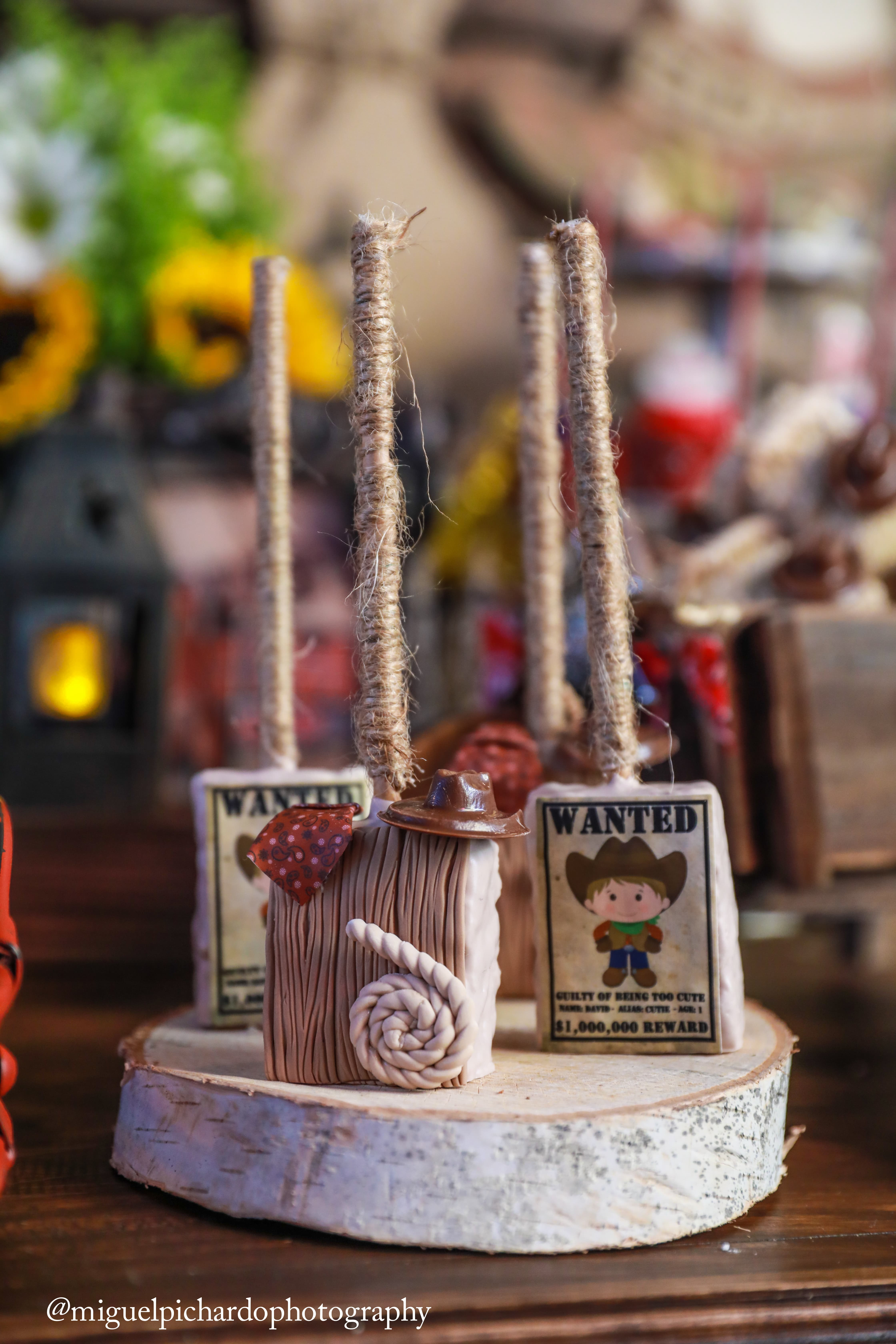 Cowboy Themed 1st Birthday Party Paarteez Com
