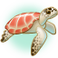 Illuka the Green Turtle