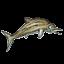 Mesozoic Monsters - Stenopterygius
