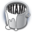 Miami Bling