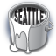 Seattle Bling